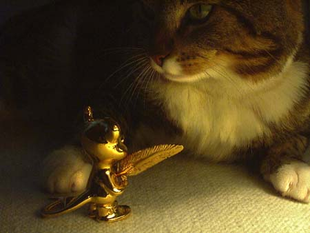 BSD figurine and cat