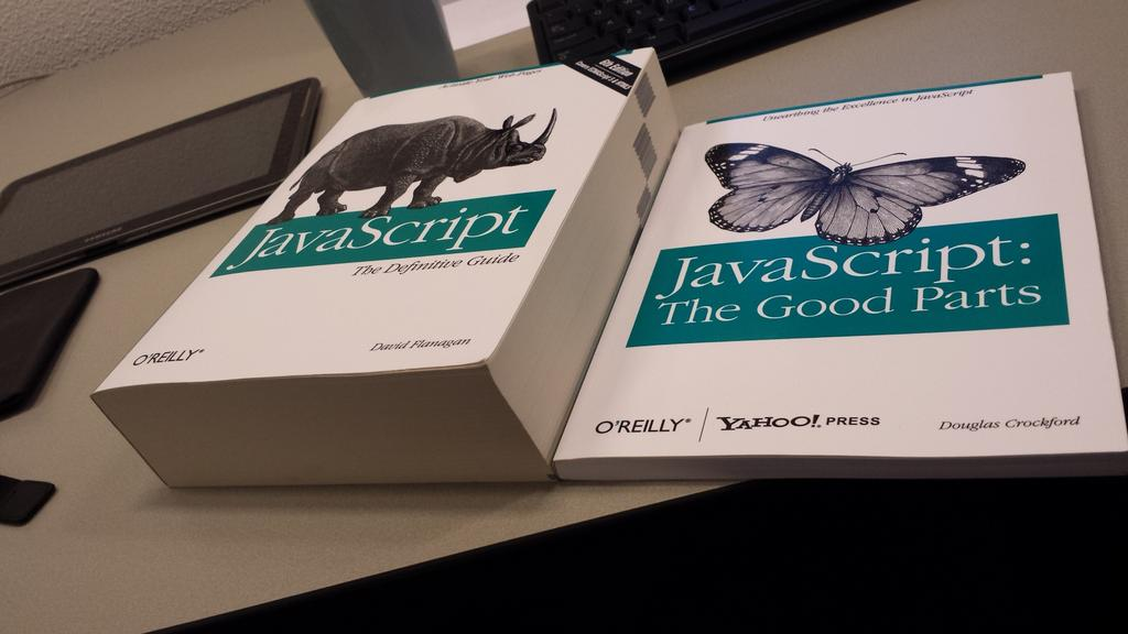 JavaScript books definitive guide vs good parts