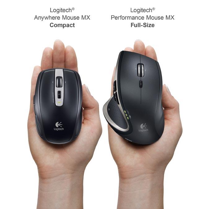 Mouse Size Comparisons