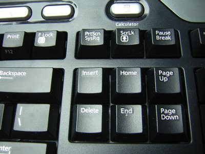 Microsoft Keyboard: How to Disable the F Lock Key